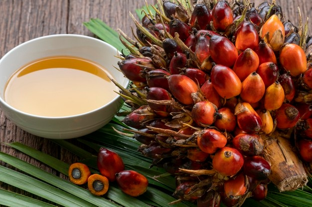 Palm kernel oil: Benefits for hair, skin, and health